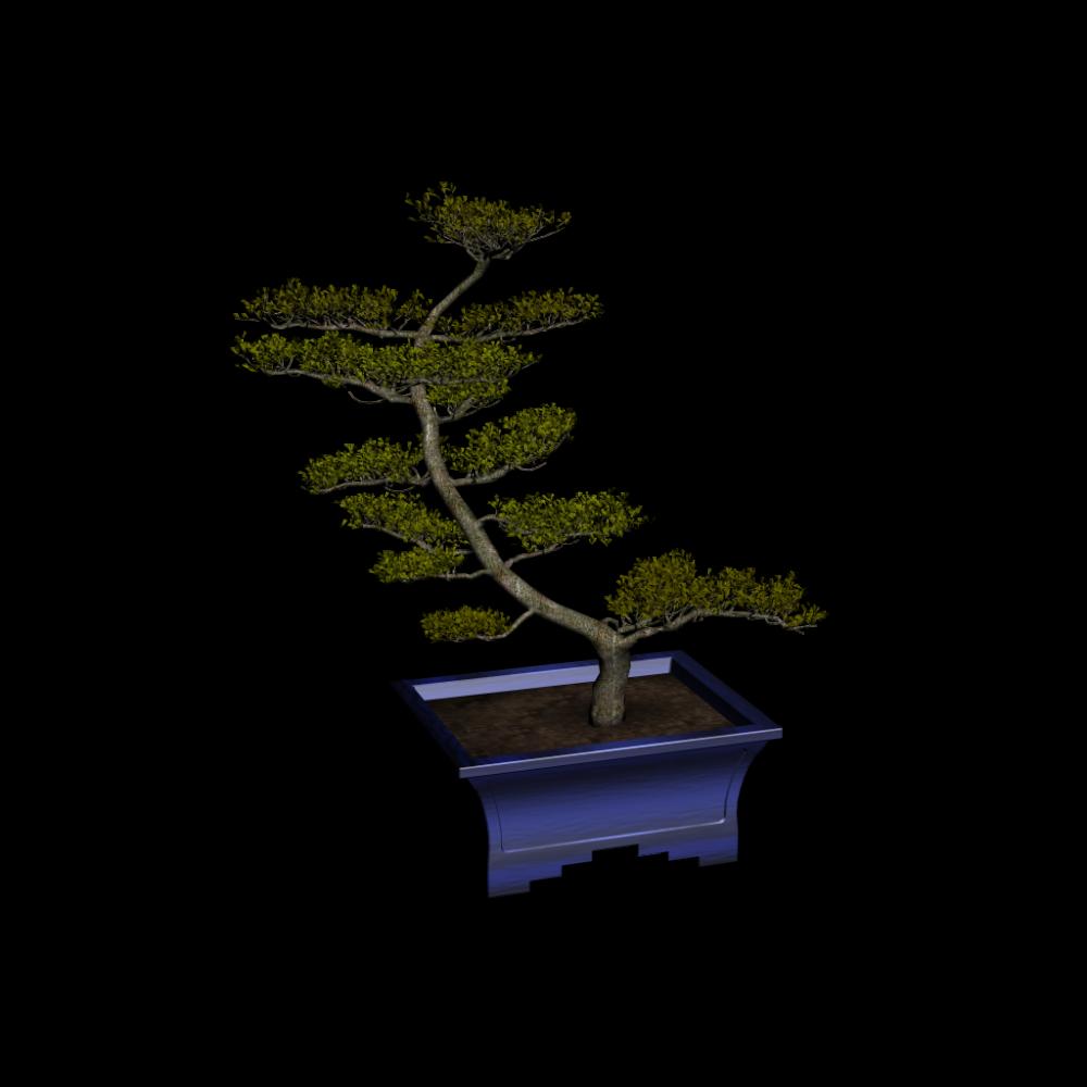 bonsai baum einrichten planen in 3d. Black Bedroom Furniture Sets. Home Design Ideas