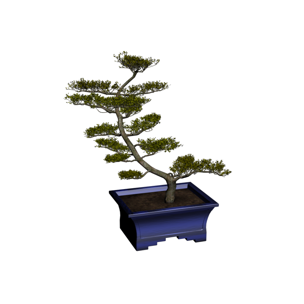 bonsai design and decorate your room in 3d. Black Bedroom Furniture Sets. Home Design Ideas