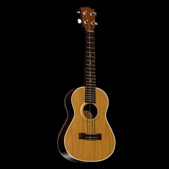 Gitarre stehend