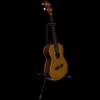 Gitarre im Ständer