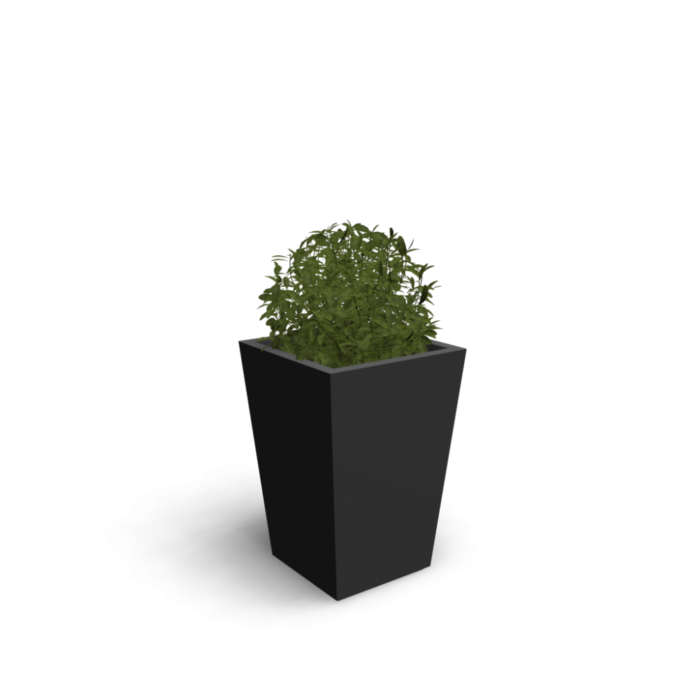 Indoor plant - Design and Decorate Your Room in 3D