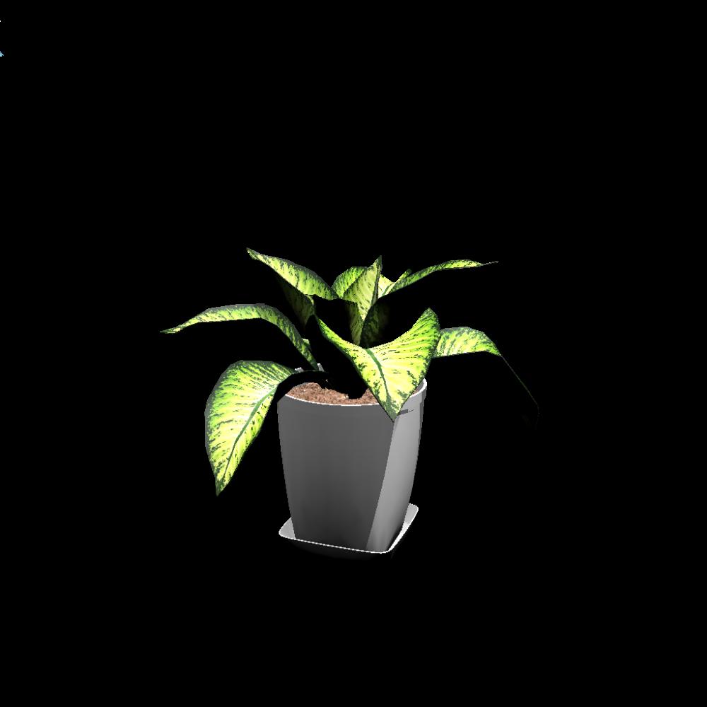 Indoor plant plantsded94d2f97xxl
