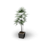 Minipalme für die 3D Raumplanung