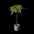 Palme für die 3D Raumplanung
