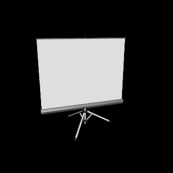 Projectionsleinwand