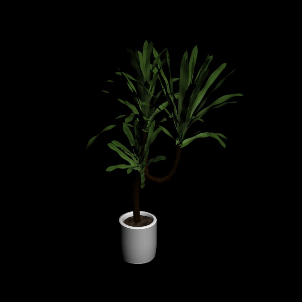 yucca palme einrichten planen in 3d. Black Bedroom Furniture Sets. Home Design Ideas