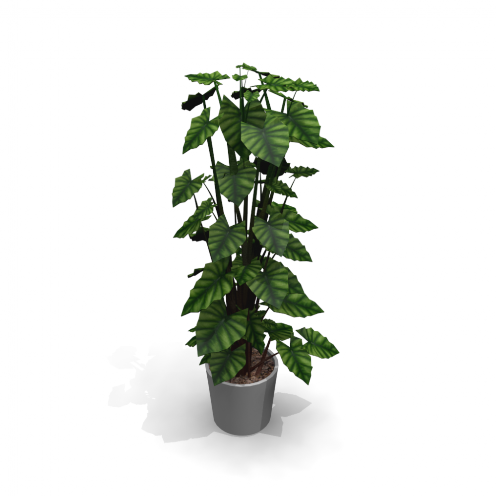 Grünpflanzen Green Plants Zimmerpflanzen: Einrichten & Planen In 3D