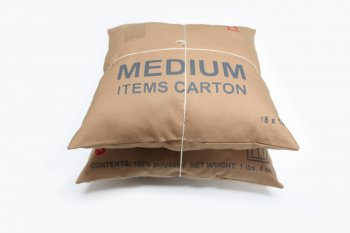 Carton Pillow